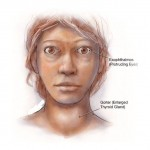 an-overview-of-the-thyroid-problem-known-as-graves-disease